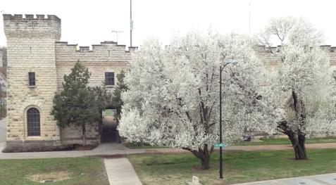 2013.04 campus