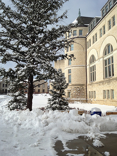 2014.01 hale in the snow