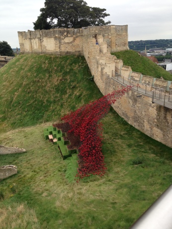 Dismantling the poppy display